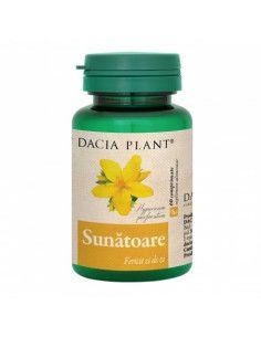 Dacia plant Sunatoare x 60 cpr