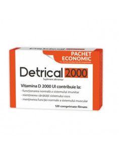 Detrical Economic 120cp