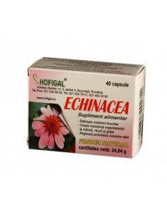 Echinacea 500mg 40 capsule Hofigal