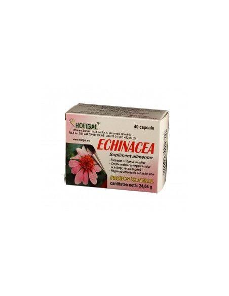 Echinacea 500mg x 40 capsule