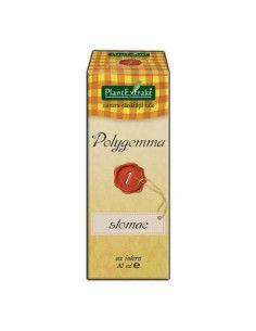PlantExtrakt Polygemma 1 ( stomac ) x 50 ml