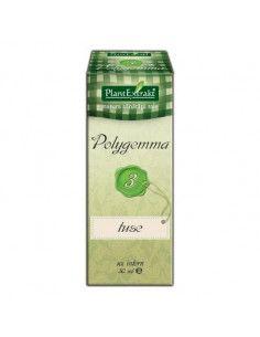 PlantExtrakt Polygemma 3 (tuse) x 50 ml