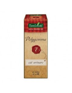 PlantExtrakt Polygemma 7 (cai urinare ) x 50 ml