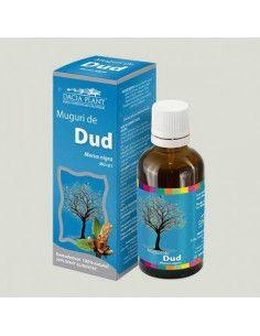 Dacia Plant Dud muguri gemoderivat x 50 ml