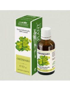 Dacia Plant Cretisoara tinctura x 50 ml