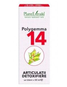 PlantExtrakt Polygemma 14 ( articulatii-detoxifiere ) x 50 ml