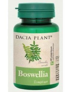 Dacia Plant Boswellia x 60 cpr