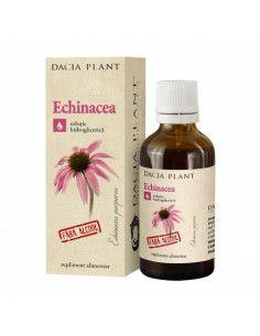 Dacia Plant Echinacea tinctura fără Alcool x 50ml