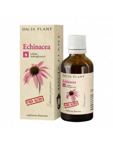 Dacia Plant Tinctură de Echinacea fără Alcool x 50ml