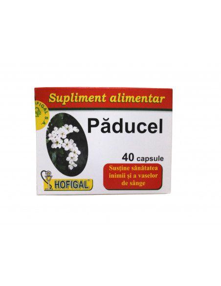 Hofigal Paducel 40 capsule